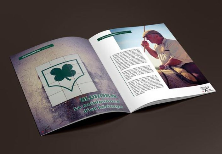 Création de magazines Gard nîmes alès arles